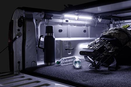 Access Motion LED Light
